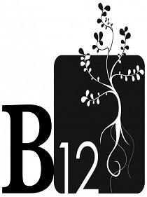 b12_new